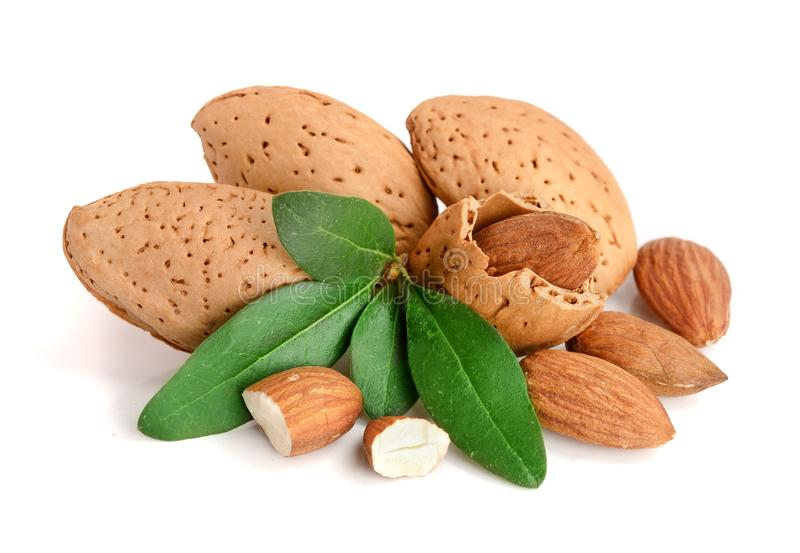 Group of almond nuts with leaves isolated on white background royalty free stock image