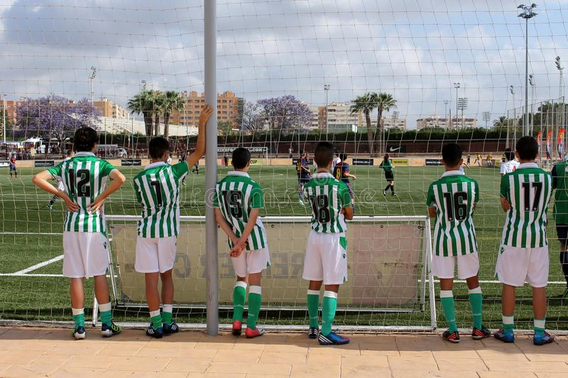 A group of amateur young soccer players are watching a interesting match royalty free stock photography