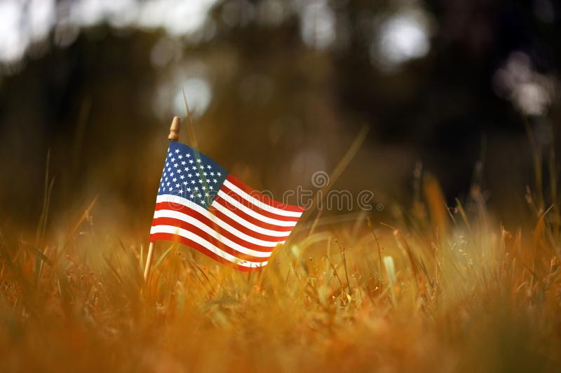 American flag in yellow and orange Autumn grass royalty free stock photo