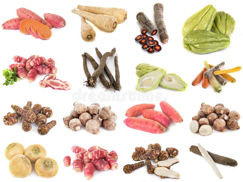 Group of ancient vegetables royalty free stock photo