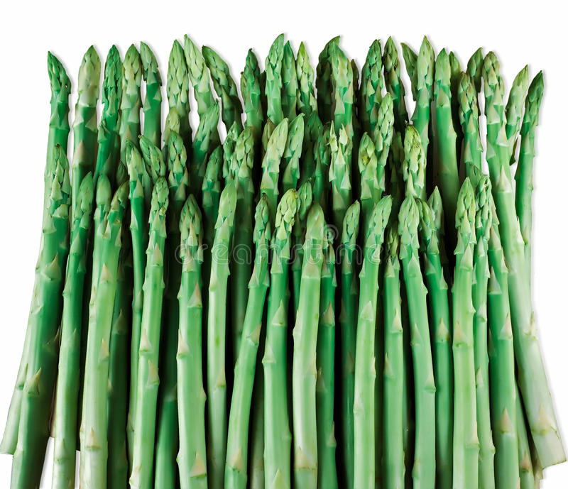 Download Group of asparagus stock photo. Image of asia, arrangement - 23734390