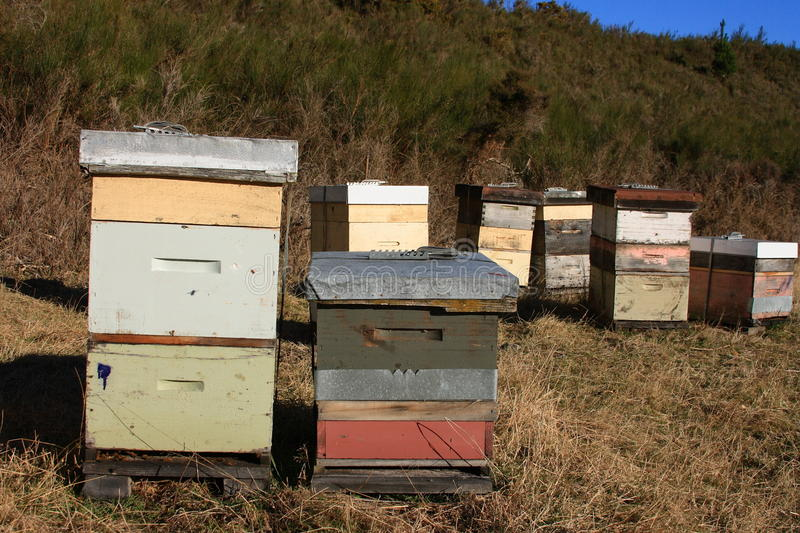 Group of Bee Hives royalty free stock photos