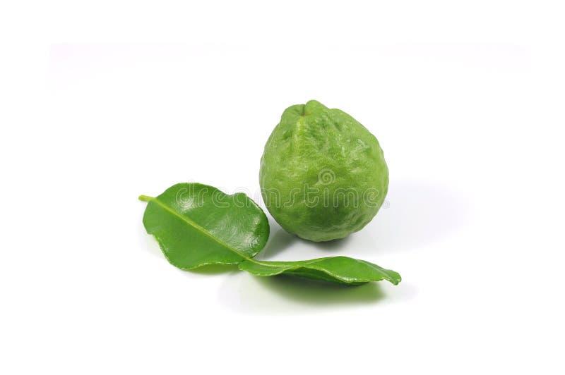 Group of bergamot and leaf royalty free stock image