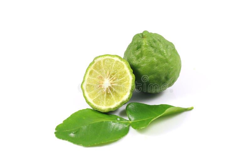 Group of bergamot and leaf royalty free stock photo