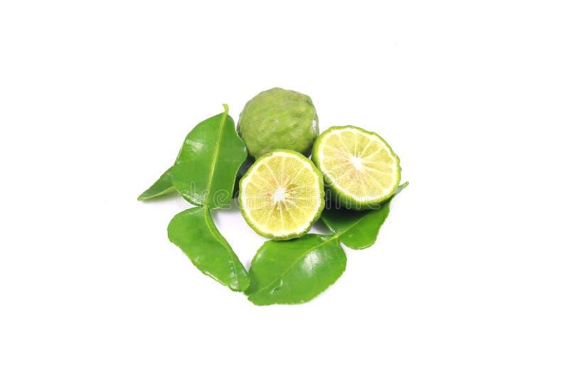Group of bergamot and leaf stock photos