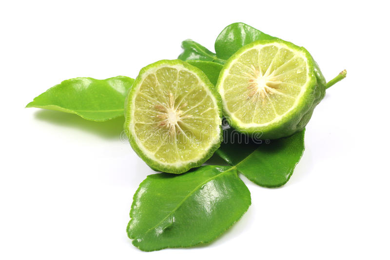 Group of bergamot and leaf stock images