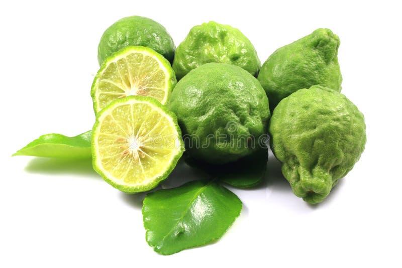 Group of bergamot and leaf stock image