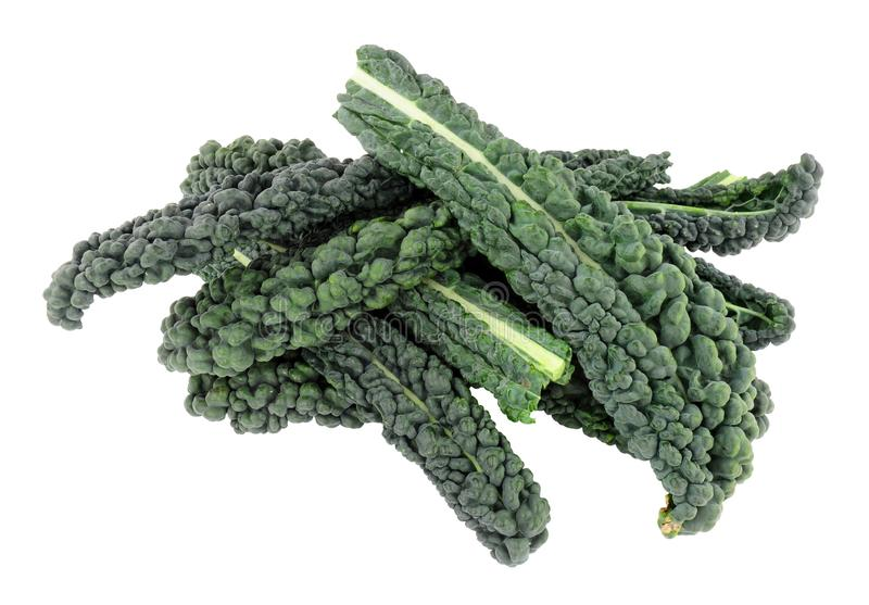 Cavolo Nero Kale Leaves. Group of black kale leaves isolated on a white background royalty free stock photos