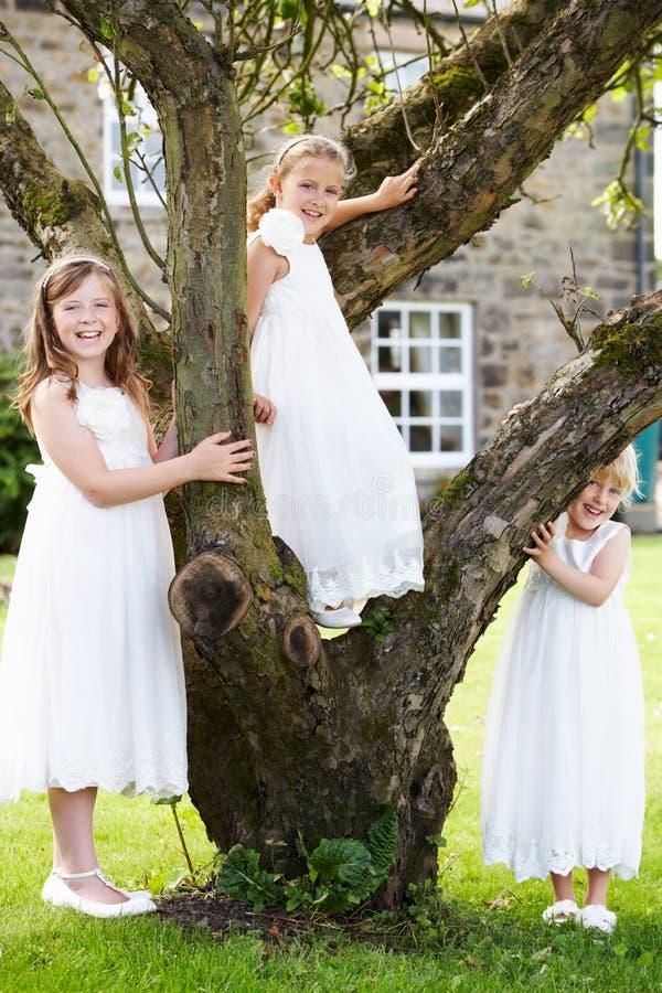 Group Of Bridesmaids Playing In Garden stock photos