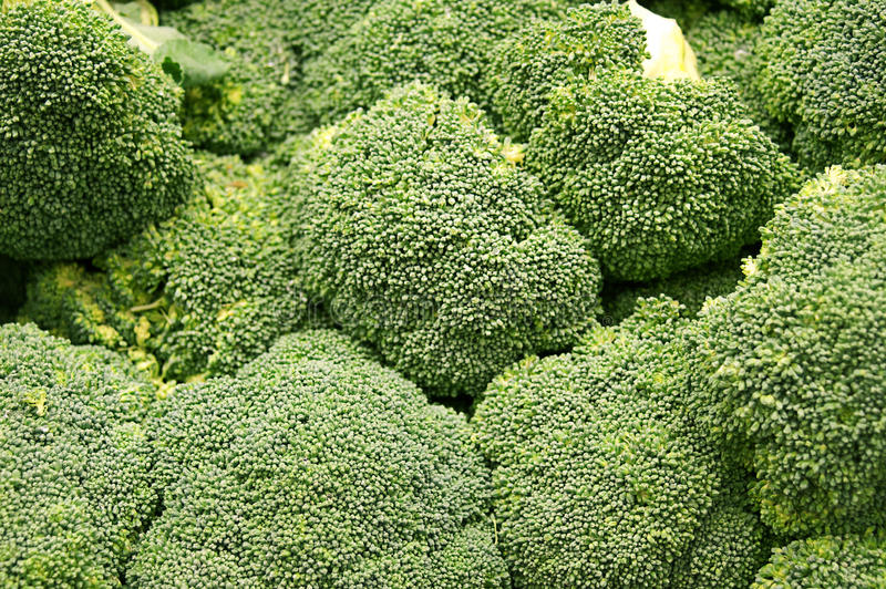 Download Group of Broccoli stock image. Image of ingredient, pepper - 28313143