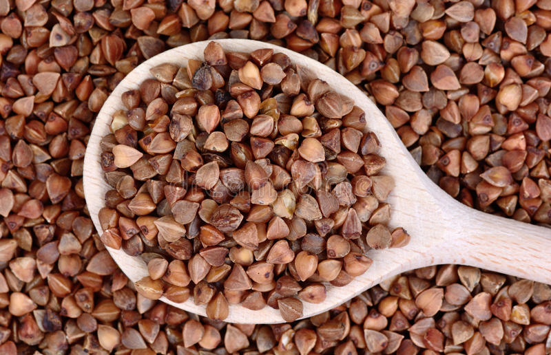 Group of buckwheat groats in a spoon royalty free stock image