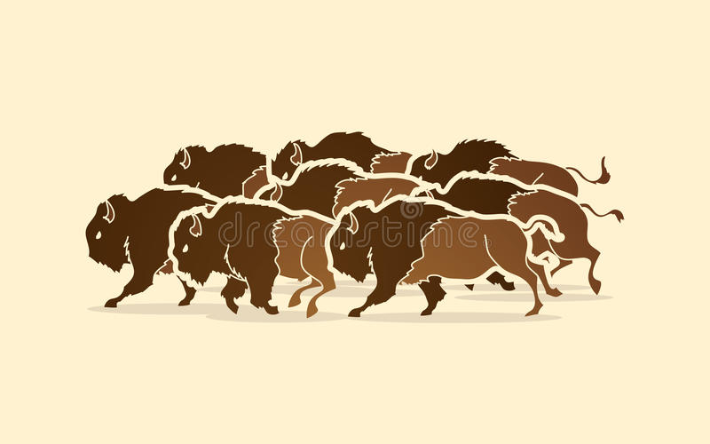 Group of buffalo running. Graphic vector royalty free illustration
