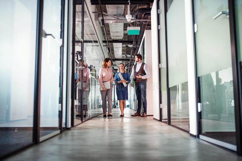 Group of business people walking in an office building, talking. stock images