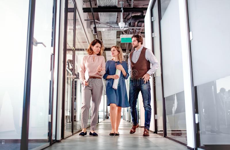 Group of business people walking in an office building, talking. stock photography
