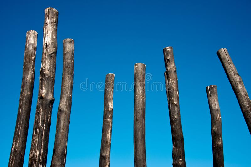Group of charred wooden poles. Against blue sky stock images