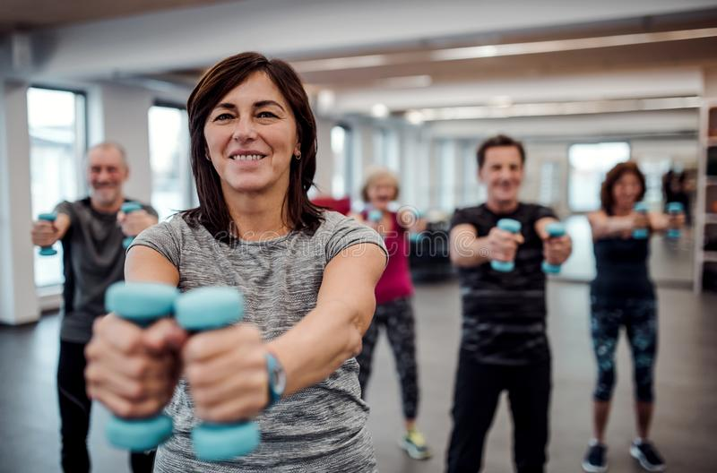 Group of cheerful seniors in gym doing exercise with dumbbells. royalty free stock photos