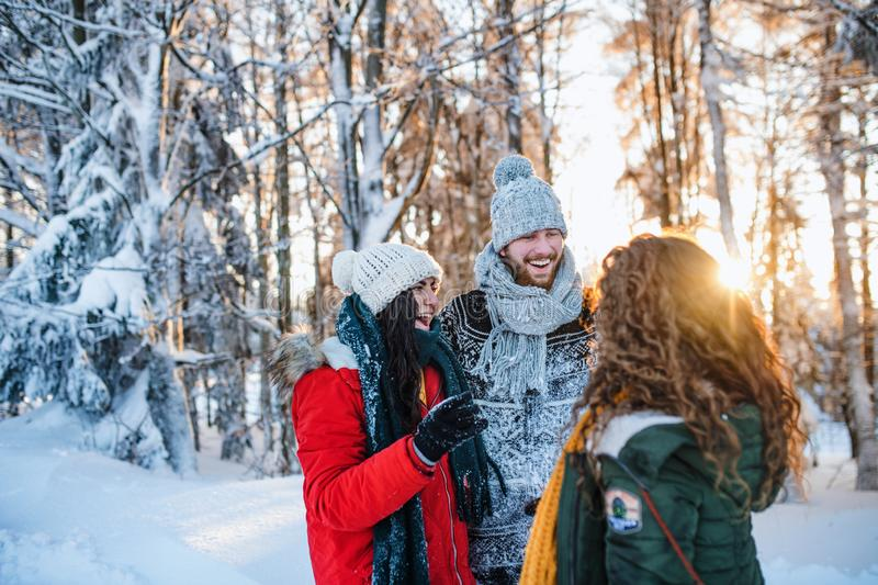 A group of cheerful young friends standing outdoors in snow in winter forest. royalty free stock photos