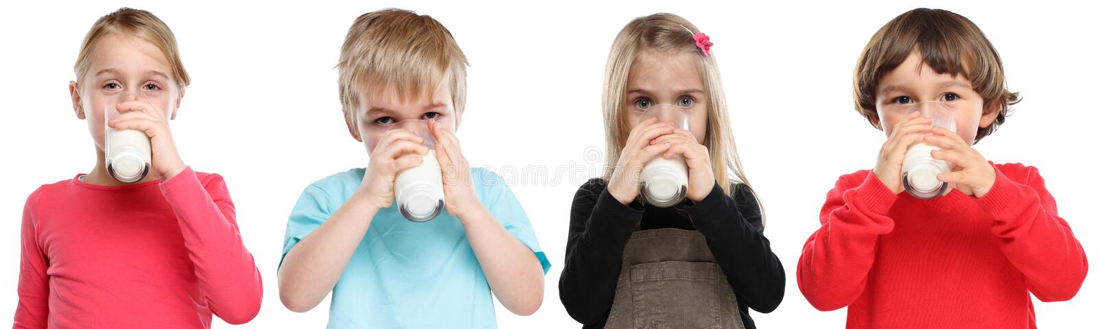 Group of children little girl boy child drinking milk kid glass. Healthy eating isolated on a white background stock image