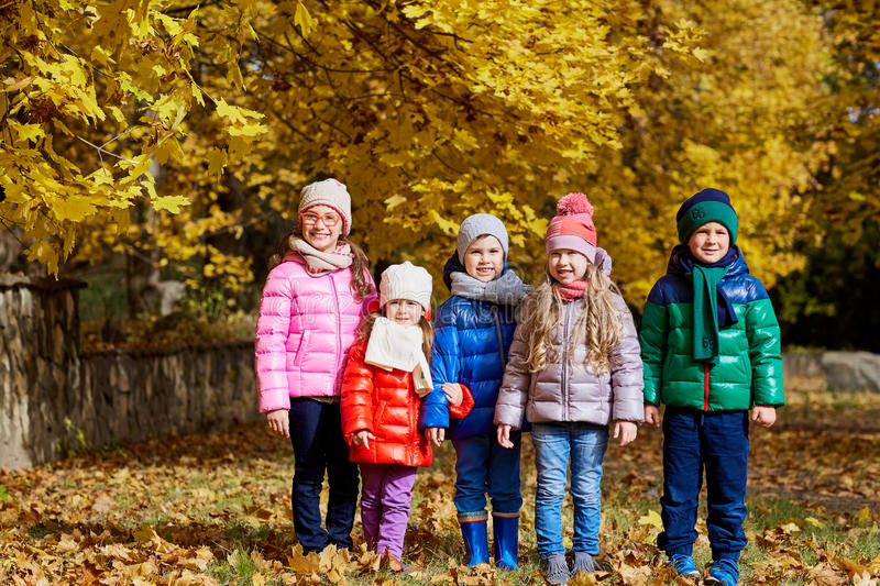 A group of children in the park yellow autumn. Little boys and g stock image