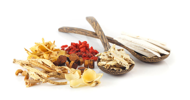 Group of chinese medicine herbs royalty free stock photo