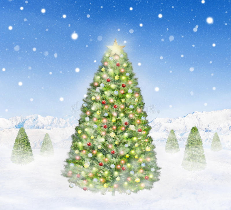 Download Group Of Christmas Trees Outdoors Snowing Stock Image - Image: 44051339
