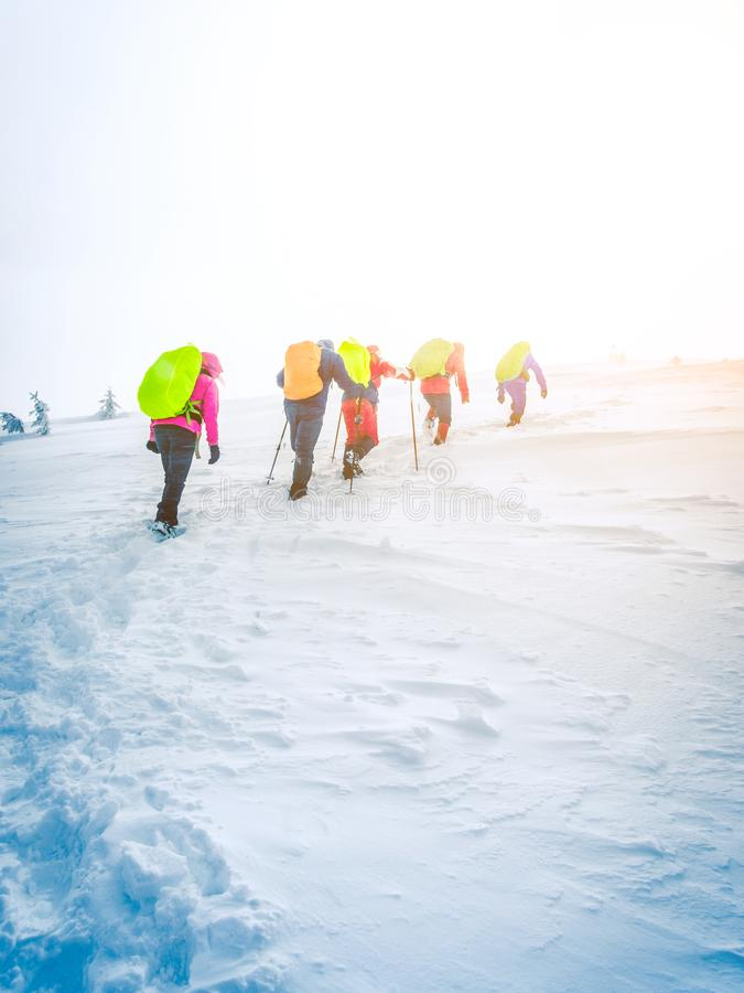 Group of climbers going to the top of mountain in winter royalty free stock photo