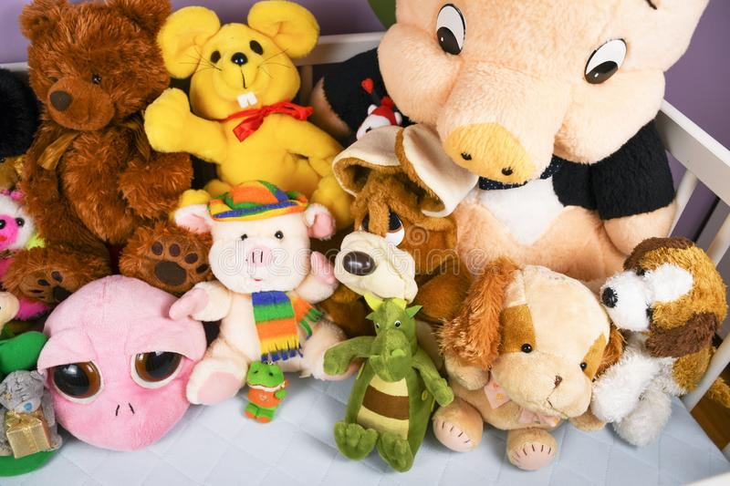 Group of colorful fluffy stuffed animal toys close up in a white wooden baby crib. Waiting for newborn baby to arrive home royalty free stock photos