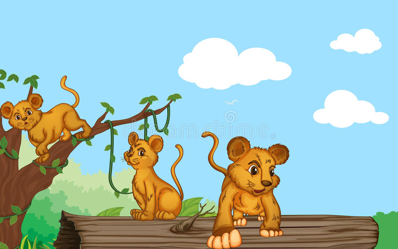 A group of cubs. Illustration of group of cubs and nature royalty free illustration