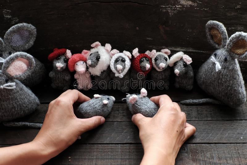 Group of cute grey mice and woman hand hold small rat. Funny concept with group of cute grey mice and woman hand hold small rat on black wooden background stock photography