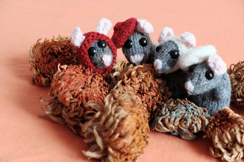 Group cute mice stand on orange  background. Woolen small rat knit from yarn in free time of craftsmanship royalty free stock images