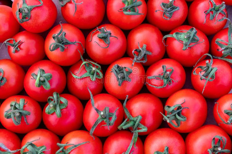Group of delicious red tomatoes, summer tray market farm full of organic vegetables, top view pattern, selective focus,. Agriculture background royalty free stock photos