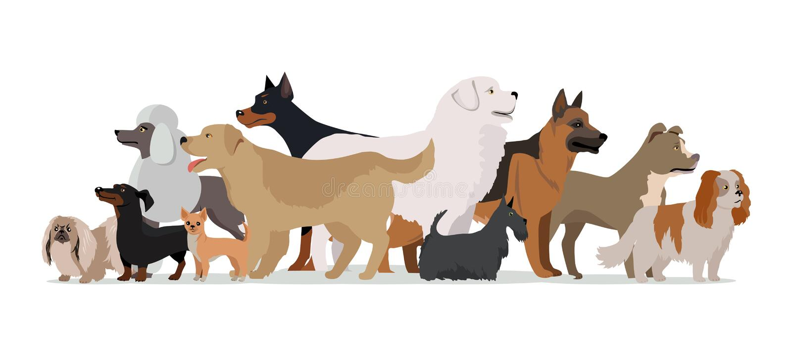 Group of Different Breeds Dogs. stock illustration