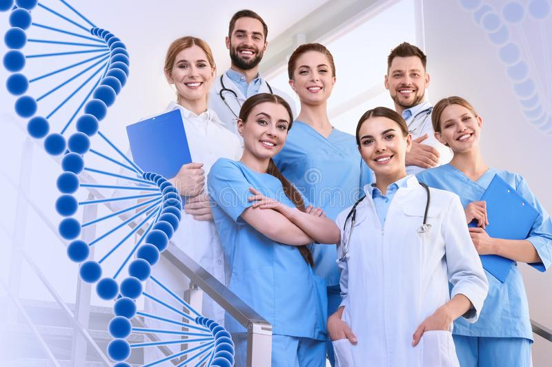 Group of doctors at clinic and DNA formula. Medical service stock photography