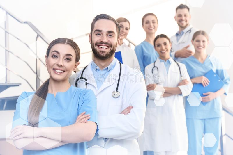 Group of doctors in clinic. Medical service royalty free stock image