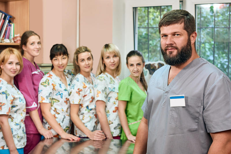 Group of doctors at the vet stock photo