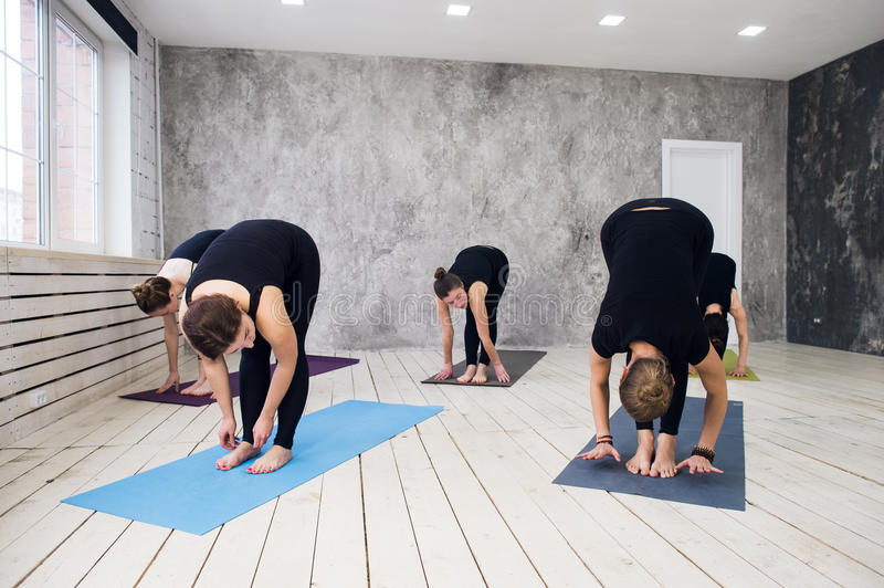 Group doing yoga at the gym welcoming on yoga class exercises download group doing yoga at the gym welcoming on yoga class exercises starts indoors m4hsunfo