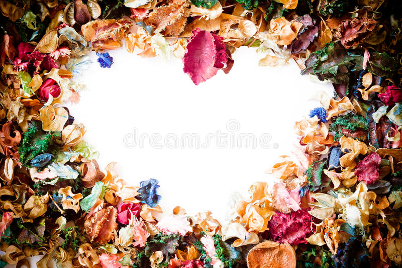 Group of dried aromatic flower form as hearth frame isolated over white royalty free illustration