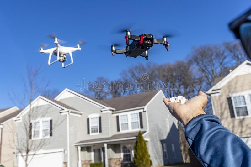 A Group Of Multiple Drones Fly Together Through The Air Against A Blue Sky Waiting To Be Fed royalty free stock image