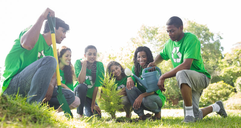Group of environmentalists planting royalty free stock image