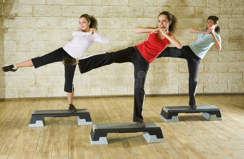 Download Group Of The Exercising Women Stock Image - Image: 4241043