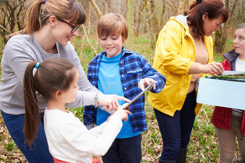 Group Exploring Woods At Outdoor Activity Centre stock photos
