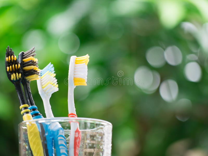 Group family Toothbrushes in glass stock images
