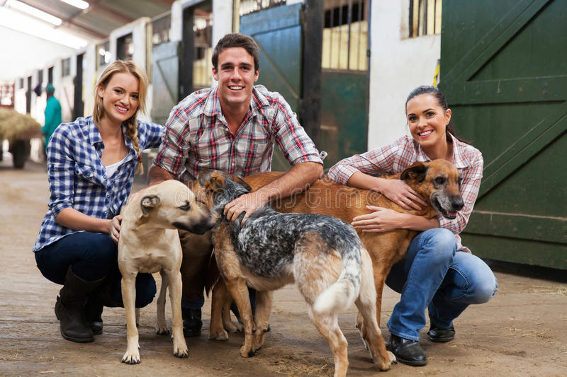 Group farm workers. Group of happy farm workers with pet dogs in stables royalty free stock photos