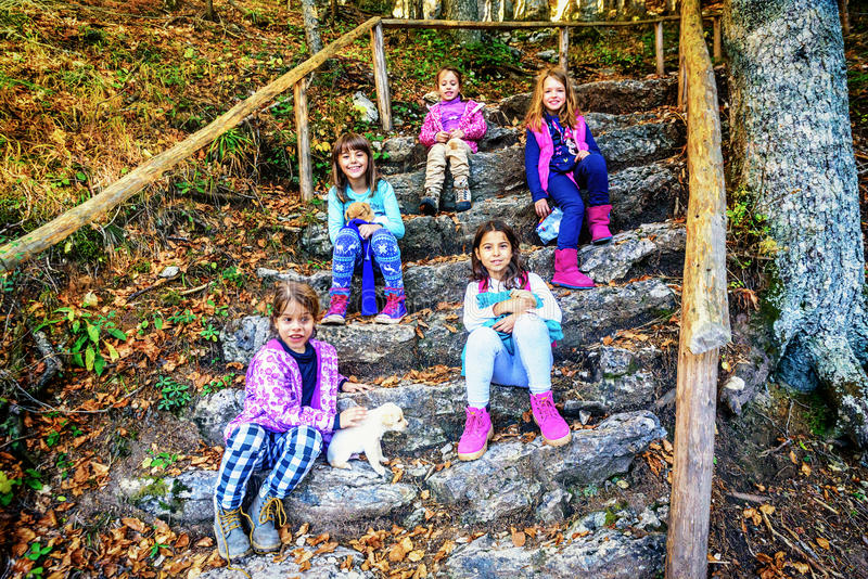 Group of five little girls sitting on the stone staps and playing with puppies in the forest royalty free stock photography