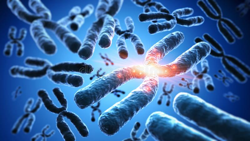 Group of  floating chromosomes - illustration of genetic concept. Group of  floating X chromosomes against a blue backdrop- scientific illustration of genetic stock illustration