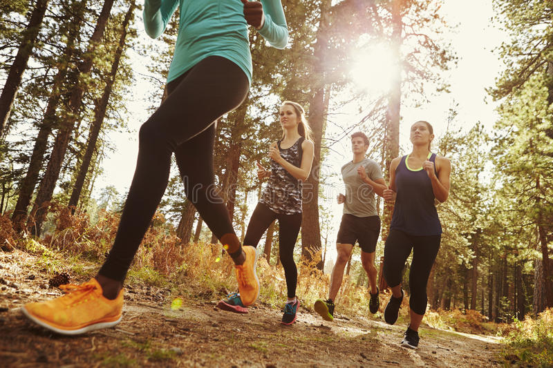 Group of four adults running in a forest, low angle close up stock image