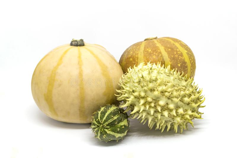 Pumpkin, horned melon vegetables royalty free stock image