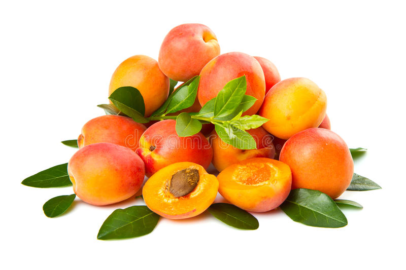 Group of fresh apricot isolated on white royalty free stock photos