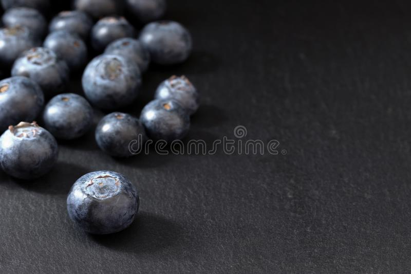 Group of fresh Canadian blueberries with place for your text stock image