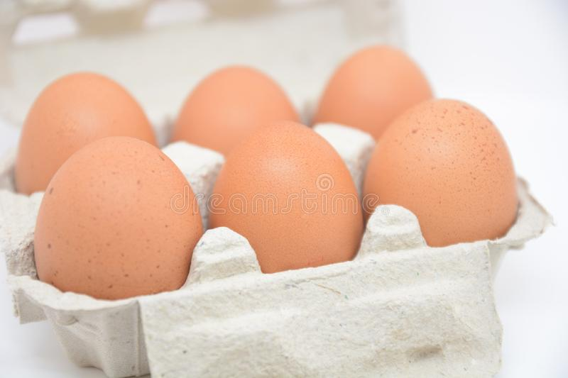 Group of fresh eggs food from farm for breakfast nature nutrition agricolture royalty free stock images